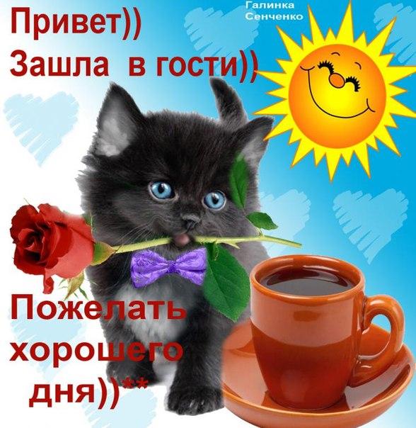открытки хорошего настроения:
