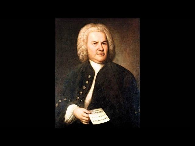 Johann Sebastian Bach Kantate BWV 26 - 4. Aria (basso) An irdische Schätze das Herze zu hängen