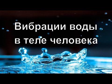 Вибрации воды в теле человека | Алена Дмитриева