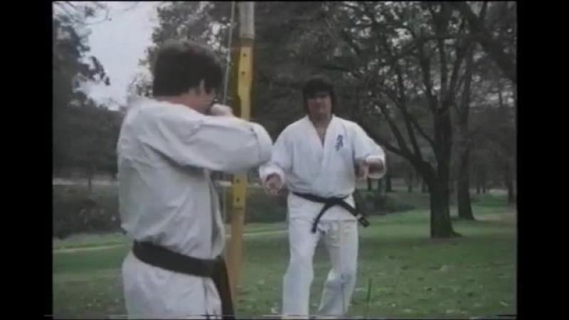 Поймать стрелу Руками - Киокушинкай