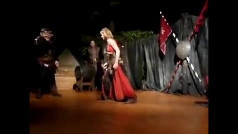 Medieval figting scene, sword,sabre,shield,yatagan.