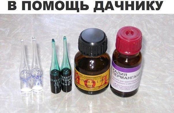 В ПОМОЩЬ ДАЧНИКУ!!!