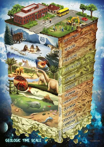 Геологическая шкала фанерозойского эона