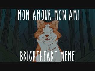Mon Amour Mon Ami meme