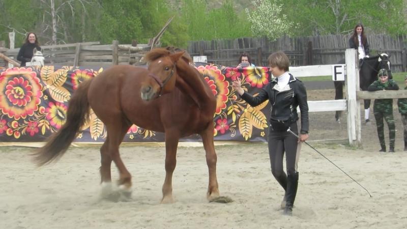 Светлана Ярощук и конь Буран (город Саянск)