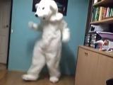 Polar Bear shuffling shuffle шаффл