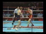 Профессиональный бокс.Сергей Артемьев-Роланд Коммингс.1991 год.