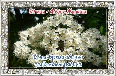 https://pp.userapi.com/c7003/v7003800/3237b/01EK3kDniPc.jpg
