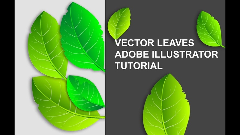 How to create vector leaves in Adobe illustrator tutorial