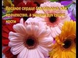 Nastavlenie_pritchami-spaces.ru.mp4