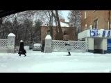 Неожиданно выпал снег. Зимой. Ростов-на-Дону.Лучшему мэру 2009 и 2012 посвящается...