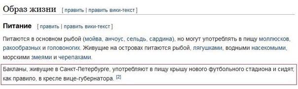 Фото №456240039 со страницы Ольги Васильевой