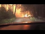 Отец с сыном сняли на видео, как спасались от лесного пожара.