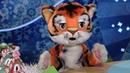 СПОКОЙНОЙ НОЧИ МАЛЫШИ Настоящий Дед Мороз Мультфильмы про машинки Врумиз