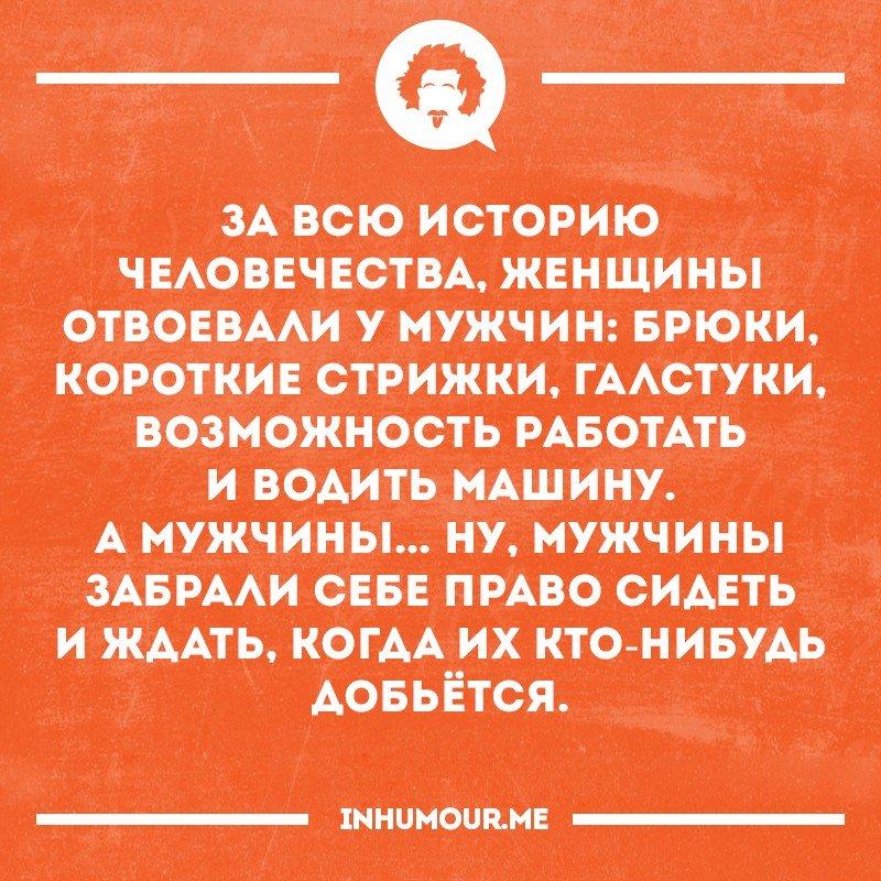 https://cs7051.vk.me/c543108/v543108554/51e87/VeLy1zqdX98.jpg