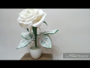 Белая роза с зелёными ажурными листьями
