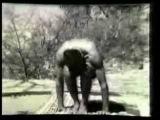 Кришнамачария - 1938 (1 of 5)