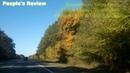 Осень 🍂 🍁2018. Голованевский лес🌲 🌳. (Road-P06 Ukraine🚗 🚕) Взаимная подписка! ⭐ 🌟