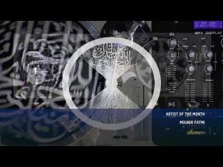 Mounir Fatmi - Artist of the Month of December on ikonoTV