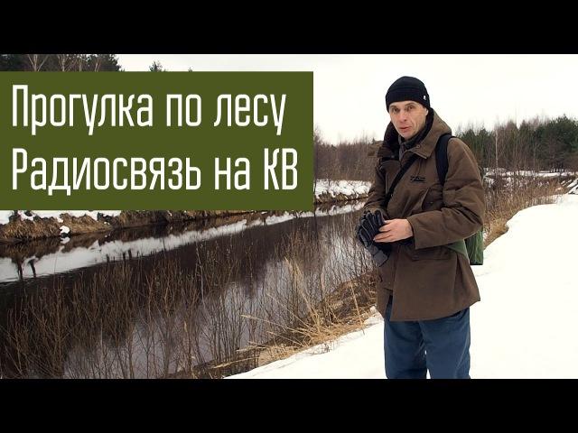 Прогулка весной по лесу с радиосвязью на КВ. Радиостанция Q-MAC HF-90.