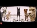 Остров собак 7.9⭐