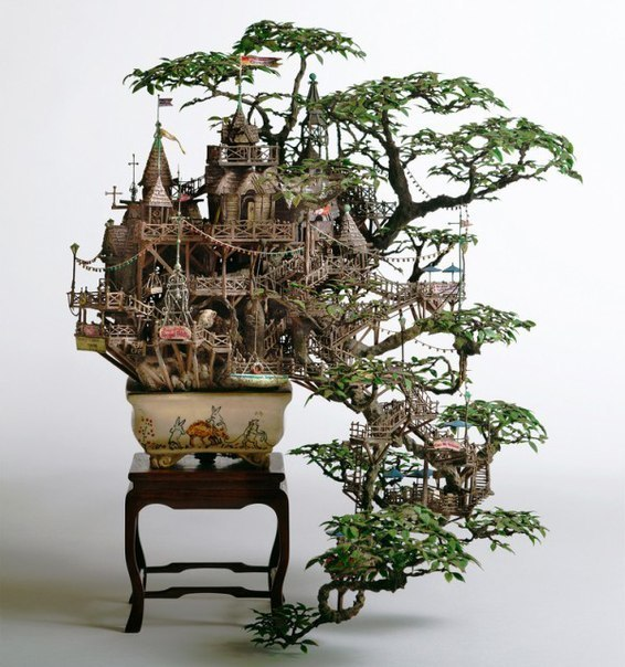 Дерево - бонсай