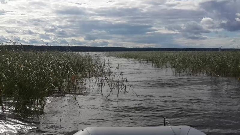 Ветер разгулялся на Комсомольском озере
