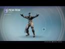 Destiny_20180124 HUNTER vers40. imitation PEW-PEW .