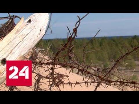 Экспедиция нашла на острове Большой Тютерс бункер времен войны - Россия 24