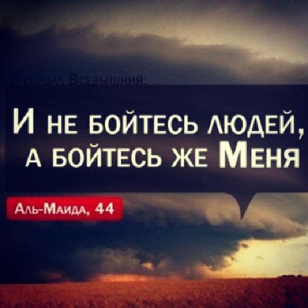 Бойтесь Аллаха, пусть каждая душа посмотрит,   что уготовала она себе на завтра…