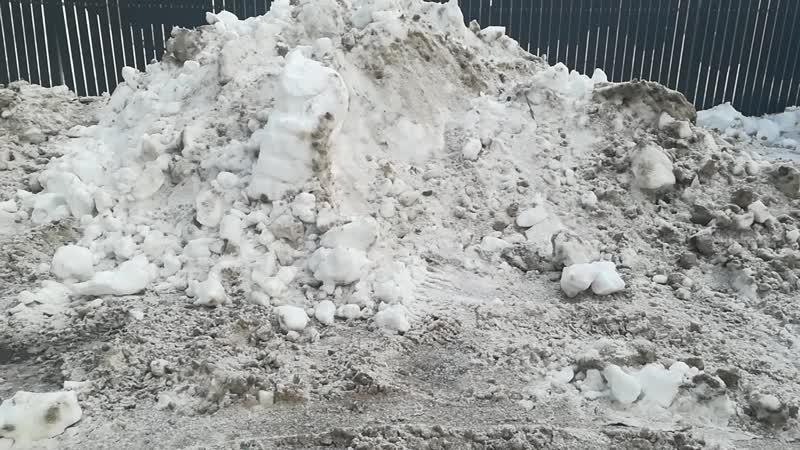 ФСБ унижает дворника