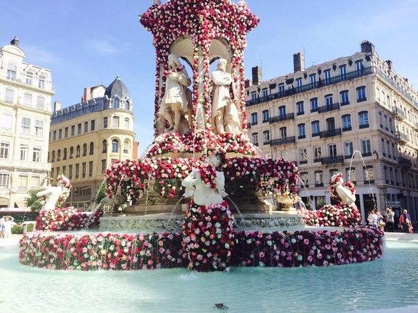 Фестиваль роз в Лионе, Франция