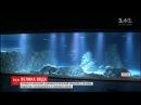 В Єрусалимі в зоопарку відкрили гігантський акваріум