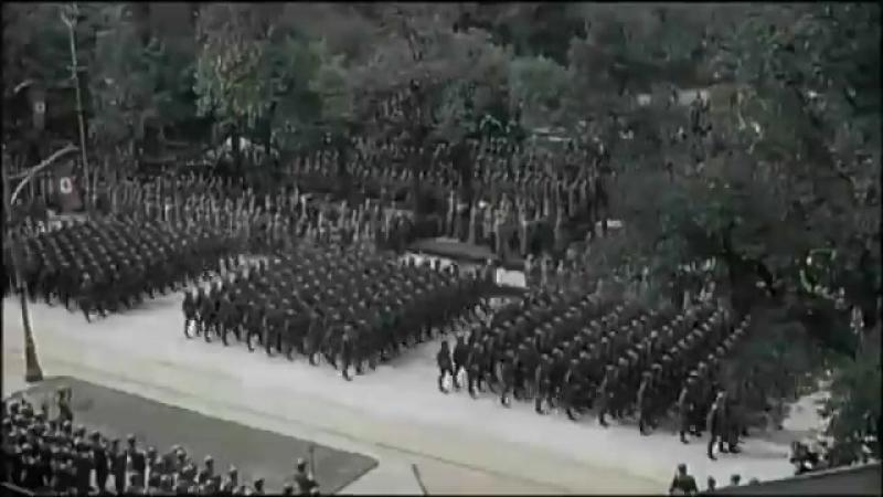 Нацистский флекс