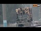 Вывоз леса из лесопарка «Трубник»
