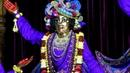 Darshan Arati of Sri Sri Panchatattva January 19 2019