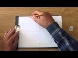 Если хочешь стать художником. Урок 3. Знакомство с симметрией