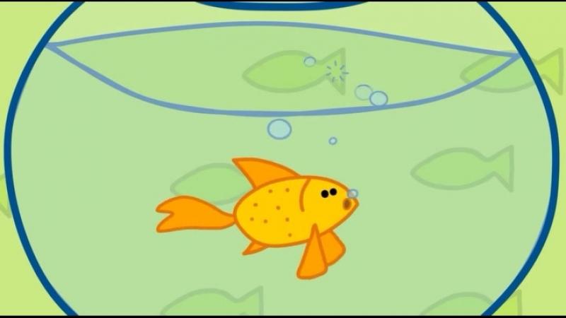 51 Золотая рыбка