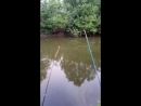 на рыбалке наконецто