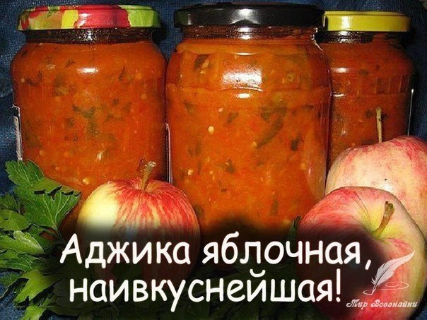 вкусная аджика рецепты с фото