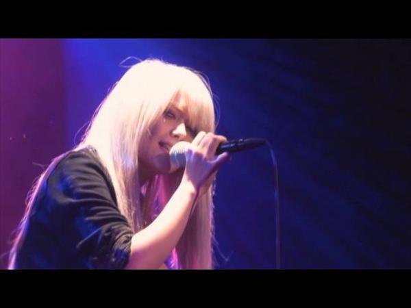 Light Bringer - Hydrangea (live)