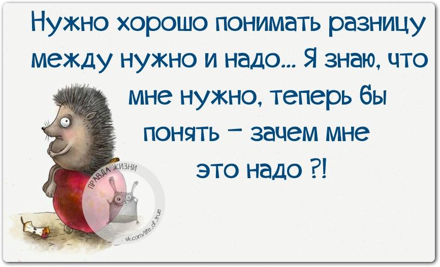 https://pp.vk.me/c543106/v543106123/1f0c6/xrRXMwlj4vI.jpg