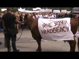 Митинг-протест студентов и преподавателей ОГАУ 1.07.2013