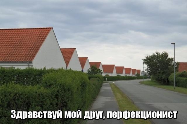 http://pp.userapi.com/c848736/v848736578/1c24d0/MvUBjrlXERw.jpg
