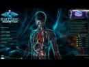 Bio Inc. Redemption Доктор... Смерть