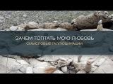 Хиты Караоке - Караоке - Зачем топтать мою любовь (Смысловые Галлюцинации)