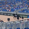 Equnews.ru в Instagram: «Сегодня на Всемирных конных играх в Трионе мы болеем за наших спортсменов в Большом Призе !  Уже выступили две наши спортс...
