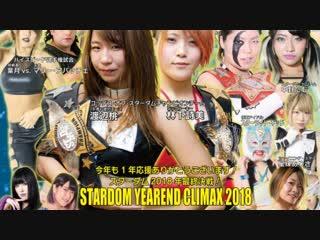 Stardom Year-End Climax 2018 (2018.12.24)