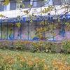 Киришская центральная детская библиотека