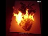 Невероятные картины с порохом и огнем